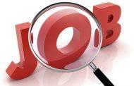 استخدام در شرکت کارگزاری سهام گستران شرق